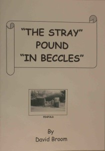 Book - The Stray Pound in Beccles